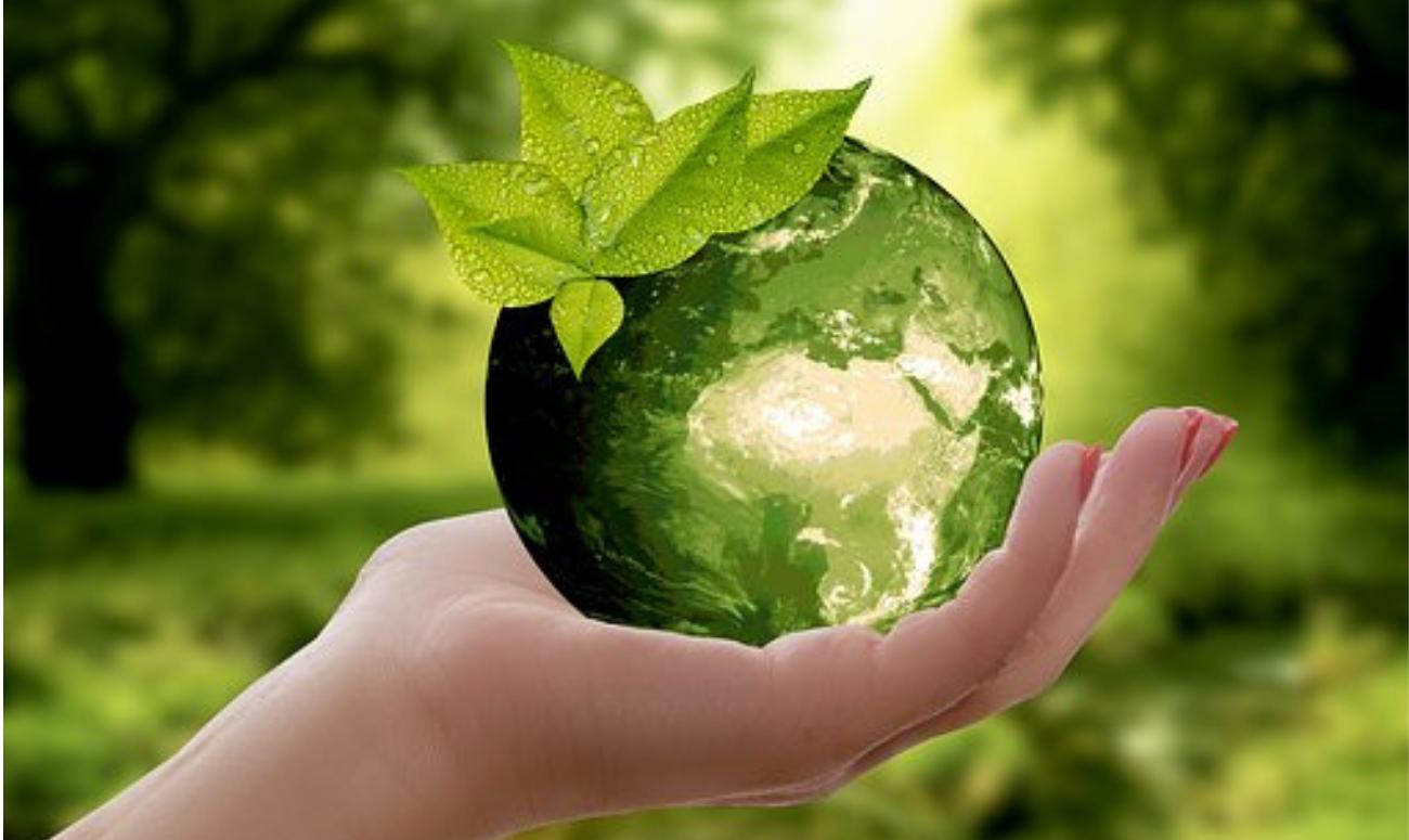 हरियाली की राह पर भारत